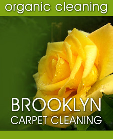 Brooklyn Carpet Cleaning