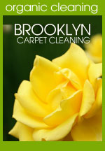 Orangic Carpet Cleaning in Chicago